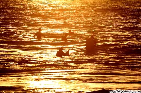 surfers in gold streamer גולשים בזהב צלם ים