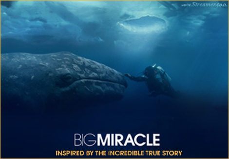 "<font color=""#003366""><strong>Inspired by the true story of 3 whales trapped under ice outside of Alaska.The movie &quot;<font color=""#840000"">Big miracle</font>&quot; Follows a reporter and a animal activist as they try to free the whales, which becomes a huge world wide story. <a href=""http://streamer.co.il/articles/view/158/"">Click here to read and watch</a></strong></font>"