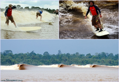 "<font color=""#003366""><strong><font color=""#840000"">One Wave = 1 Hour!!!</font>  A 48-year-old British surfer has surfed a wave for 12.8 miles (20.5  kilometers) for 64 minutes, in Kampar River, Sumatra, Indonesia. <font color=""#840000"">Steve King</font>  challenged the croc-infested waters of the Indonesian tidal bore and  rode a wave for more than one hour to smash this previous Guinness World  Record. <a href=""http://streamer.co.il/news/view/390/"">Click here to read and watch</a></strong></font>"