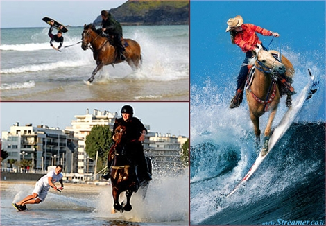 "<font color=""#003366""><strong><font color=""#7a0000"">Horse surfing: Riding on waves with horse power.</font>  The equestrian experience of horse surfing. Horseboarding is the modern  version of chariot racing that promises to pump extreme hearts and  classic horse lovers. <a href=""http://streamer.co.il/news/view/419/"">Click here to read</a></strong></font>"