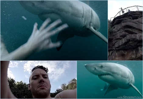 "<font color=""#003366""><strong><font color=""#5b0000"">Shark by surfprise!</font> .Apperantly OZ dude terry Tufferson did not expect the too close encounter with a great white shark after jumping from Manly jump rock. True or Fake? You have been warned! <a href=""http://streamer.co.il/clips/view/166/"">Click here to watch</a> the scarry footage</strong></font>"