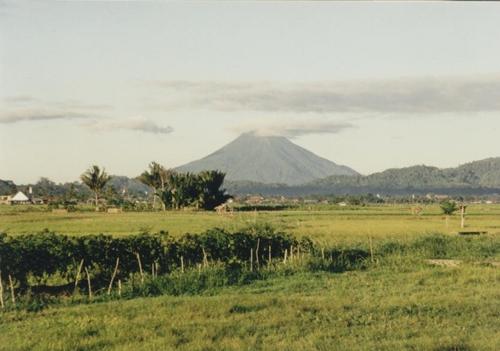 Volcano Brumo - Java