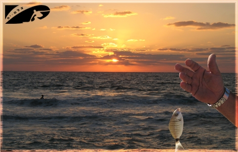 "<div align=""center""><strong>The sunset fish suppose to be golden... Datiyim beach Aug 07</strong></div>"