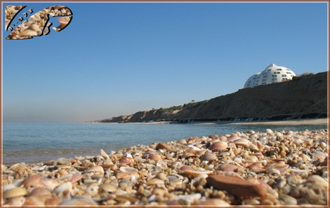 Another point of view from a shell altitude... Kever Ha-Sheich beach, Ashqelon - Jan 08
