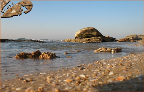 Rocks on the shores of Ashqelon - A point of view from a shell Height - Feb 08