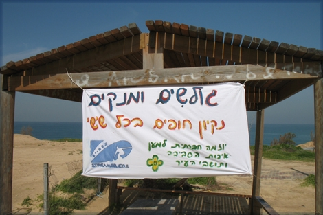 The sign that was hanged to advise for the activity on the beach