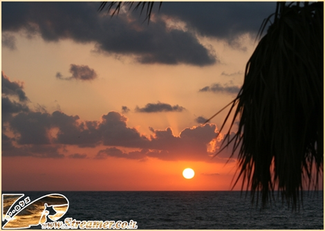 """<div align=""""center""""><font color=""""#333333""""><strong>A moment of sunset at the beach of Ashkelon - The sun is close to touch the horizon and shaddow of oalm tree on a redish sky background - July 2010</strong><br /></font></div>"""