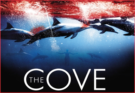 "<font color=""#003366""><strong>Movies are based on reality but sometimes reality overcomes the movie! <font color=""#e00000"">&quot;The Cove&quot;</font> is a brilliant and must see ecological movie - Using state of the art equipment, a group of activists, led by renowned  dolphin trainer Ric O'Barry, infiltrate a cove near Taiji, Japan to  expose both a shocking instance of animal abuse and a serious threat to  human health.<a href=""http://streamer.co.il/articles/view/119/"">Click here to read and watch</a></strong></font>"