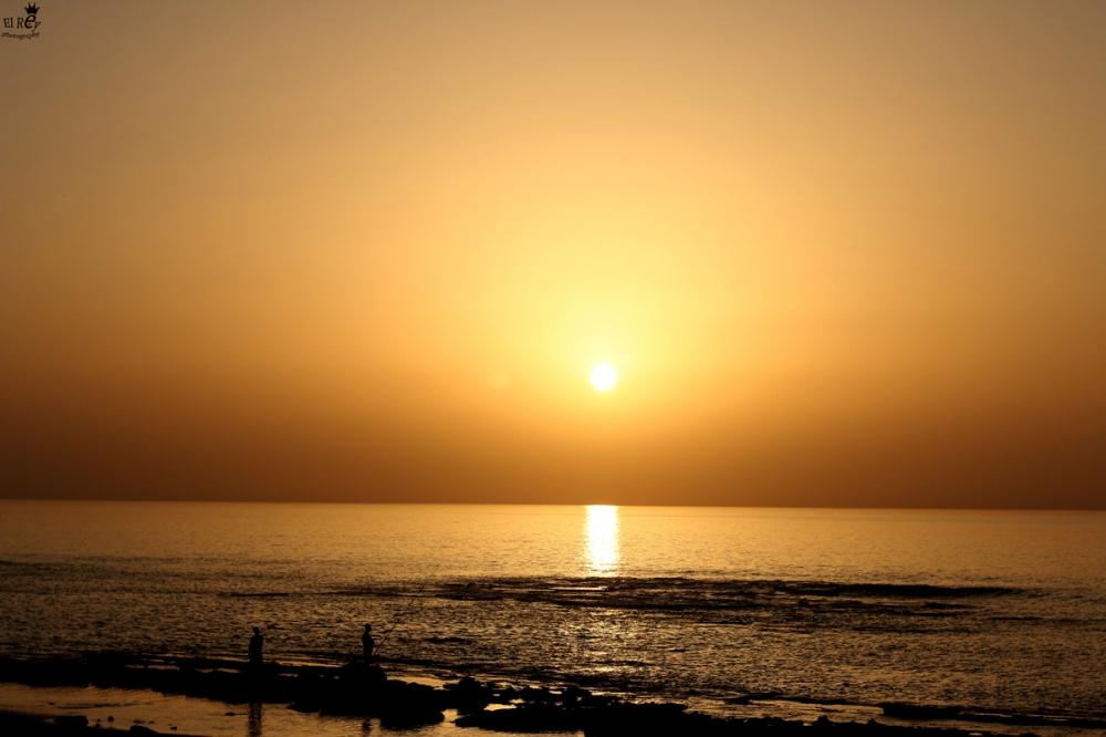 החלק הקשה של החוף מאחורינו. סוף שבוע שמשי ושקט לפני עוד סוול שבדרך. חוף כושי, מכמורת. סוף מרץ.